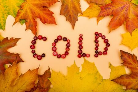 Feuilles d'automne sur fond jaune et texte FROID avec canneberges Banque d'images