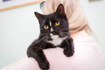 Beautiful black cat on the shoulder of a young woman