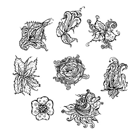 Set of decorative floral design elements. hand-drawn vector illustration on white background