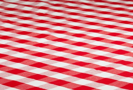 picnic tablecloth: red checked fabric tablecloth