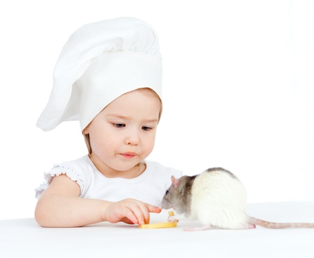 Chef girl and domestic rat eating healthy food together  Isolated on white photo