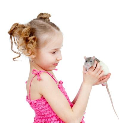 rata: adorable niño con la rata doméstica