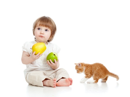 little girl with healthy food and Scottish kitten photo