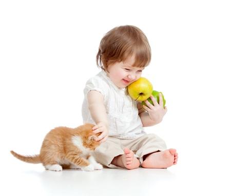 ni�os comiendo: ni�a con comida sana jugando con Scottish gatito Foto de archivo