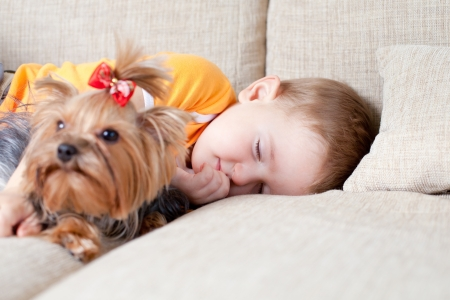 lying on couch: cute child sleeping and hugging loving dog york Stock Photo