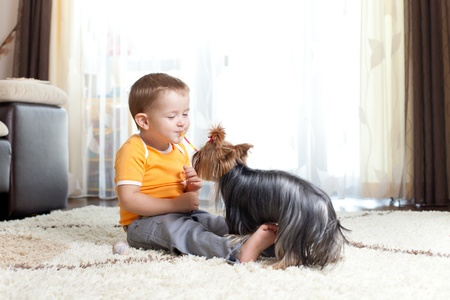 cute child playing with pet dog york photo
