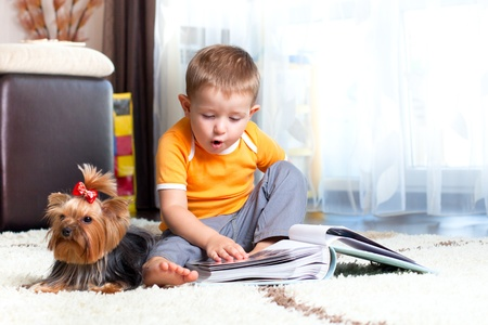 cute child playing and hugging loving dog york Stock Photo - 13401935
