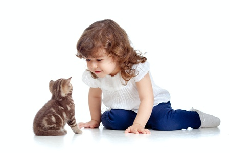 curly headed: Funny child sitting on floor  Scottish kitten looking at girl