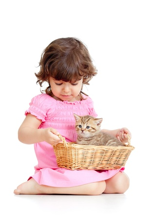 curly headed: funny little girl playing with Scottish kitten Stock Photo