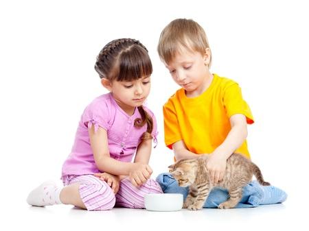 children boy and girl feeding attractive kitten photo
