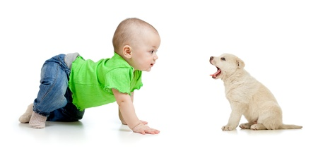baby girl playing with puppy dog photo