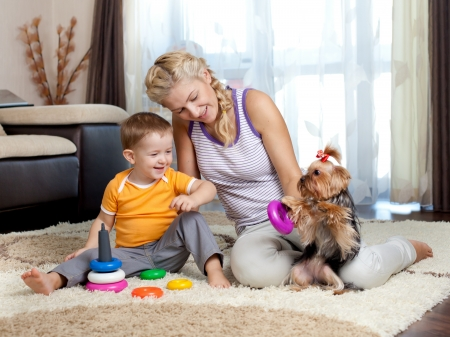 mother, child boy and pet dog playing toy together indoor Stock Photo - 13702111