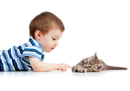 child finger: cute kid lying on floor and playing with cat pet