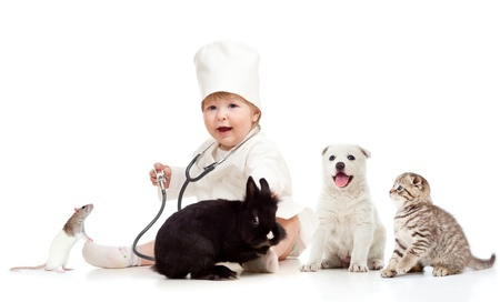 Cute small kid doctor examining pets dog, cat, bunny and rat Stock Photo