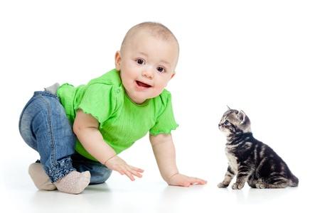 bebe gateando: divertido beb� gateando al lindo gato Foto de archivo