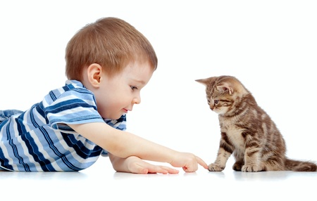 cute kid lying on floor and playing with cat pet Stock Photo - 13813535