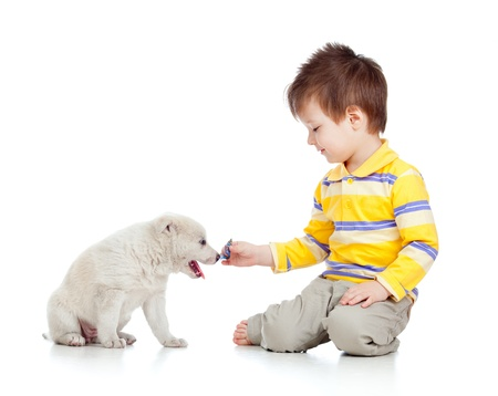 adorable boy playing with a puppy photo