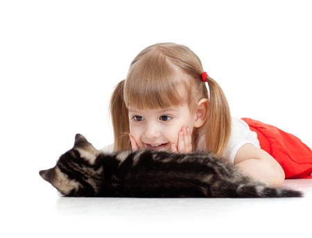 little child looking at cat on white background photo