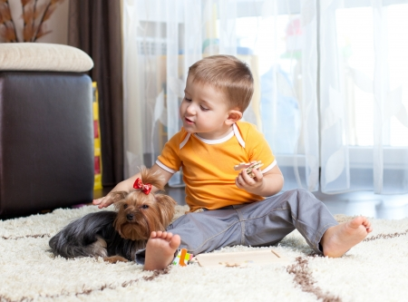 kid playing with puppy indoor photo