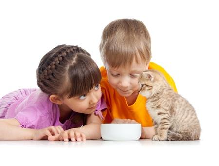 los niños chico y una chica joven con el gato