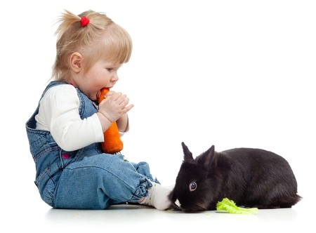 Smiling little girl eating a carrot and feeding rabbit photo