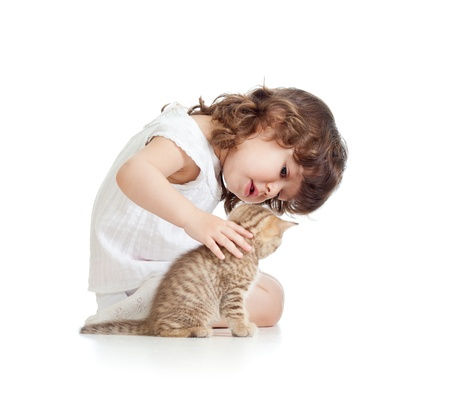 Funny kid girl playing with cat kitten Stock Photo