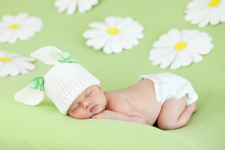 newborn baby girl sleeping on green meadow among daisy photo