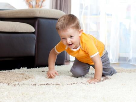 cute cheerful crawling kid boy indoor photo