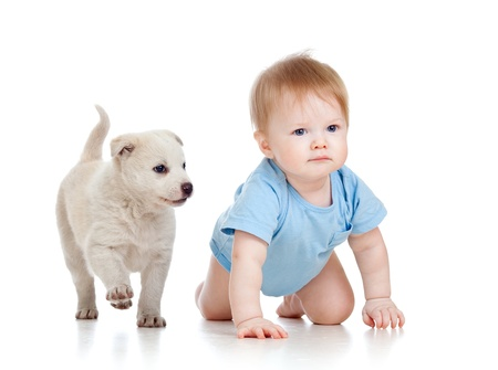 crawling: cute child boy and dog puppy playing and crawling