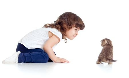 curly headed: Funny child sitting on floor  Small kitten looking at girl  Stock Photo
