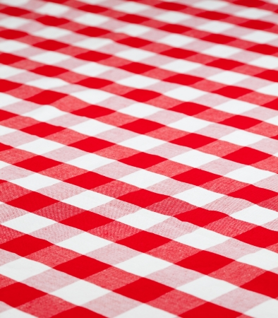 white blanket: red checked fabric tablecloth