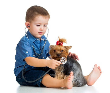 boy child examing dog puppy isolated on white background Stock Photo - 17166082