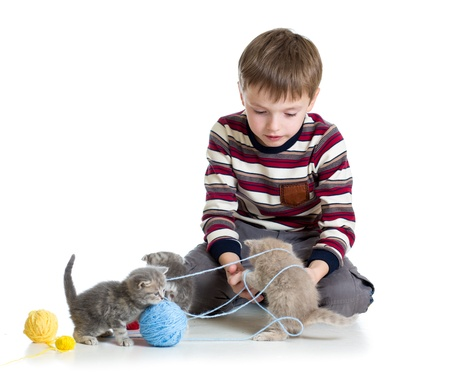 child boy playing with kittens isolated on white background photo