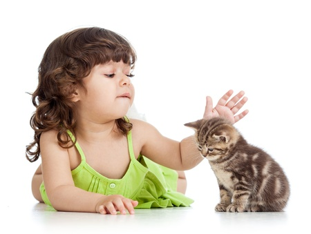 cute pussy: funny happy child playing with cat kitten Stock Photo