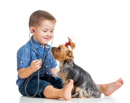 boy child examining dog puppy isolated on white background photo