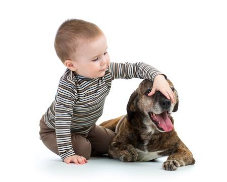 domestic dog: child boy with dog Stock Photo
