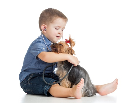 boy kid examining dog isolated on white background photo