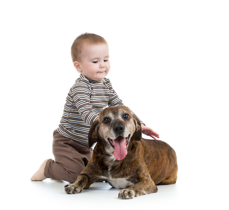 endear: kid boy with dog isolated on white background Stock Photo