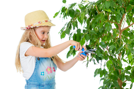 gardener kid caring at tree photo