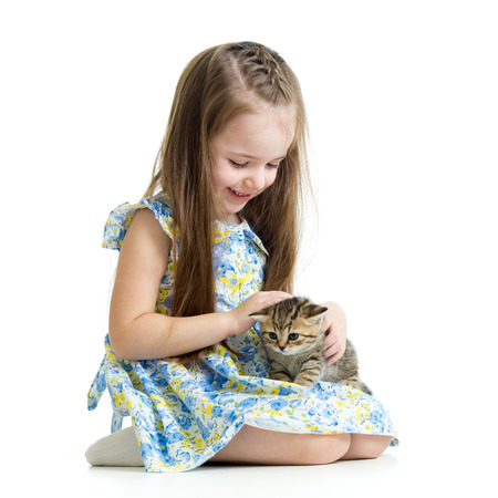 kid playing with Scottish kitten photo