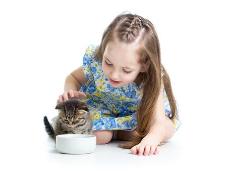 funny child boy feeding cats kittens