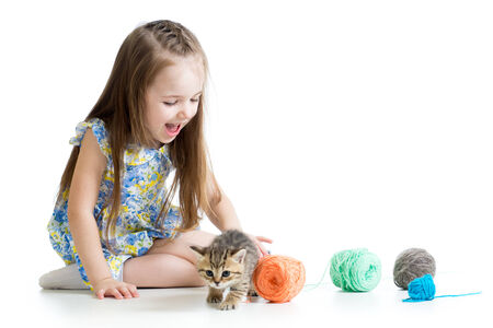 child girl playing with kitten isolated on white background photo