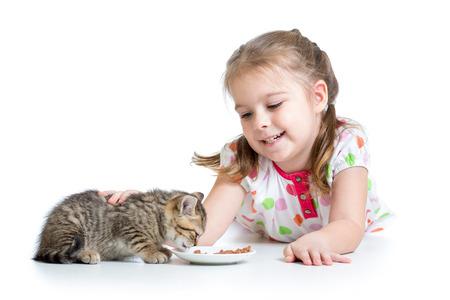 happy child feeding kitten photo