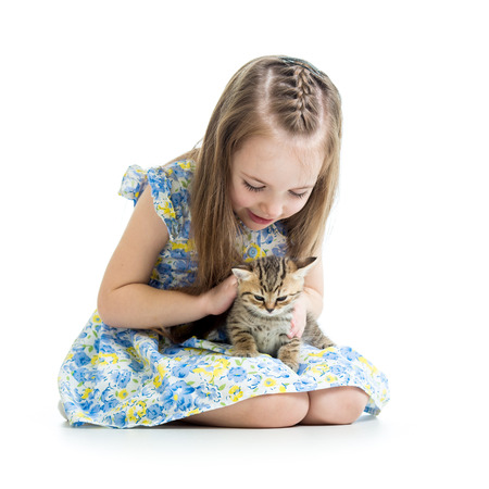 kid girl playing with Scottish kitten photo