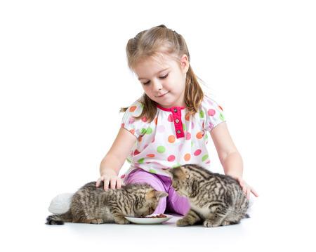 kid girl feeding cats kittens photo