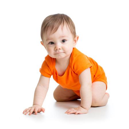 bebe gateando: lindo bebé de arrastre aislado en fondo blanco