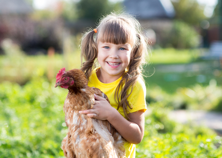 chicken farm: smiling little girl with a hen in front of the farm