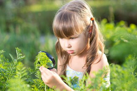 investigating: Child girl is looking at halm leaves through magnifier outdoors