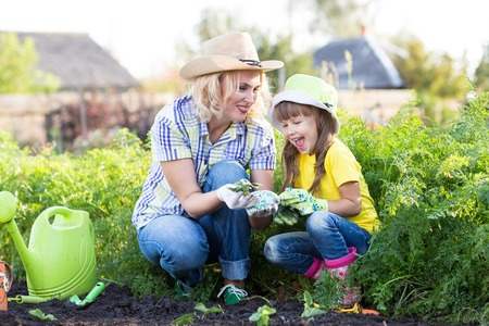 Mother and daughter child planting strawberry seedlings in summer time