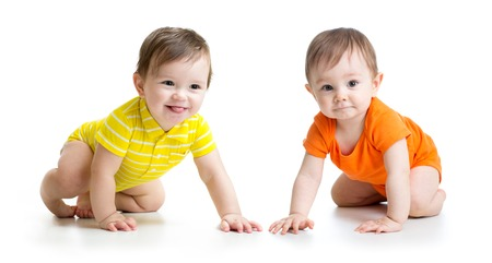 Two cute babies boys crawling on floor. Toddlers isolated on white background.